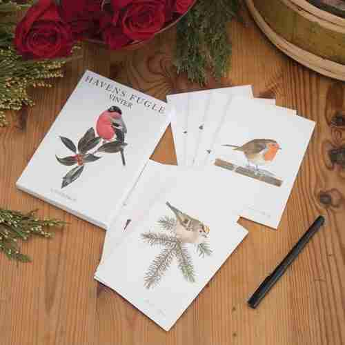 Danish Winter Birds Note cards