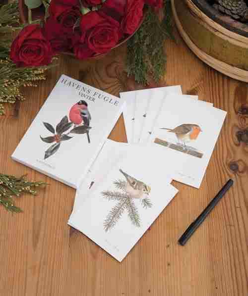 Danish Winter Birds Note cards