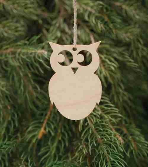 Birchwood Owl